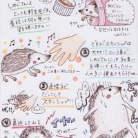 しめじブログ3