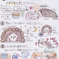 しめじブログ4