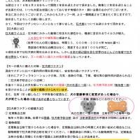 新聞No.9
